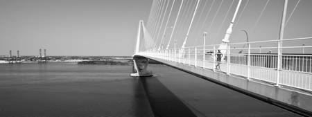 Cooper River Bridge Charleston SC