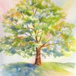 """Tree in Light"" by lindahaile"