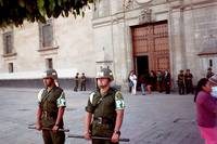 Police in front of the Palace