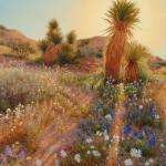 """Sunrise at Joshua Tree"" by StudioSinaloa"