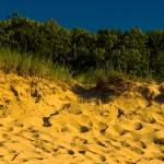 """Sunset on the Dunes Saugatuck Michigan_MG_0027"" by CEMiller"