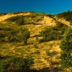 """Saugatuck Michigan Dunes_MG_0090"" by CEMiller"