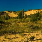 """Saugatuck Michigan Dunes_MG_9893"" by CEMiller"