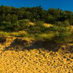 """Saugatuck Michigan Dunes_MG_9924"" by CEMiller"