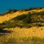 """Saugatuck Michigan Dunes_MG_9963"" by CEMiller"