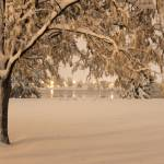 """First Snow"" by RyanShepard"
