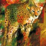 """Cheetah"" by creativesportsart"