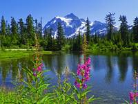 Picture Lake - Mount Shuksan Washington