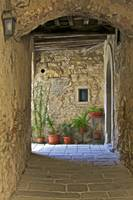Secluded Courtyard of Tuscany