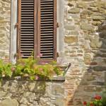 """Brown Wood Window Shutters with Flowers"" by Oldworldphoto"