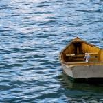 """Big boat, Little bird"" by Kismet"