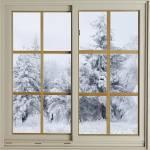"""window"" by contralto05"
