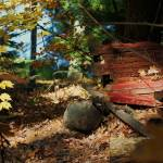 """""""Fall Wood Piles Found In The Woods"""" by rosearodoe"""