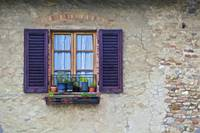 Window with Potted Plants of Rural Tuscany
