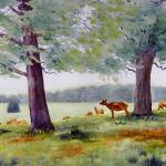 """Richmond Deer Park"" by RaymondOre"