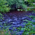 """""""Waters Edge"""" by dasiygirl"""