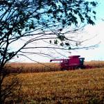 """Field Machine"" by dasiygirl"