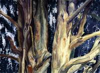 Watercolour painting of tree closeup