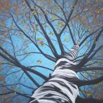 """""""And There Were Many Branches to Climb"""" by DreamGallery"""