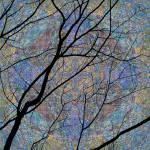"""Iridescence 1: Sky"" by artystoid"