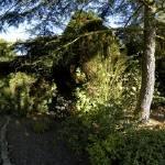 """""""garden"""" by StephenGallagher"""