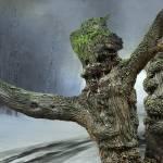 """""""Dusk in the woods"""" by zenin"""