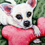 """White Chihuahua with Pink Fuzzy Toy"" by RebeccaKorpita"