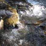 """""""River Rocks"""" by jgummerman"""