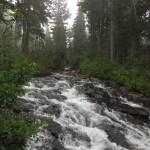 """""""Narada Falls - Prequel"""" by jgummerman"""