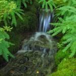 """""""Mini Waterfall (2)"""" by jgummerman"""