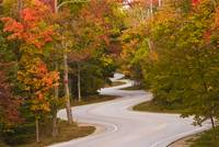 Winding Road_Orig
