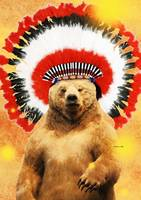 Native American Indian Bear