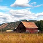 """""""Country Beauty"""" by maureenmarieltd"""
