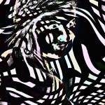 """Imagekind"" by windycreekphotography"