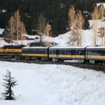 """Training through the snow"" by DianaC"