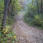 """Along the Nordic Trail"" by jackimroczkowski"