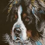 """Bernese Mountain Dog"" by foxbrush"