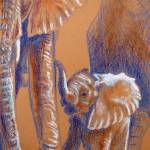 """""Family Columns"", Elephants"" by foxbrush"