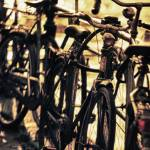 """Bicycles in Amsterdam 1"" by SkipNall"