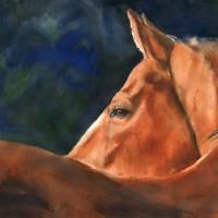 Chestnut Portrait Art Prints & Posters by Rachel Parker