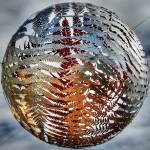 """Fernball Squircled"" by BrendaAnderson"