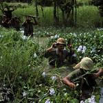 """Soldiers-Wade-Marshy-Vietnam-War"" by delc2"