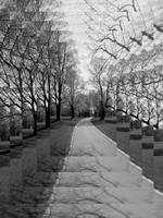 Rosenstein Park - Depth BW