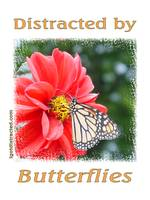 Distracted by Butterflies 04161