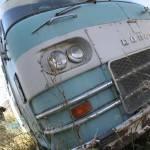 """""""Turquoise Van"""" by erinslosser"""