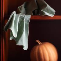 Pumpkin and cloth Art Prints & Posters by Cecilia Gilabert