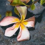 """""""Lonely Plumeria"""" by jonathanwangsgard"""