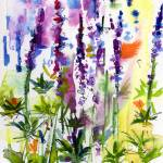 """Wild Lupines Watercolor and Ink by Ginette"" by GinetteCallaway"