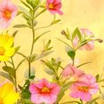 """Wild Garden Flowers"" by RossanaNovella"