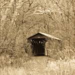 """""""Cemetery Road Bridge"""" by julieandel"""